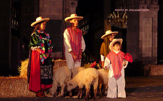 孩子和羊们在圣歌中缓缓出场