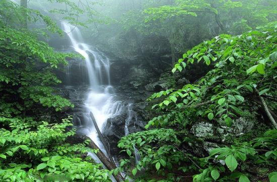 壁纸 风景 旅游 瀑布 山水 桌面 550_361