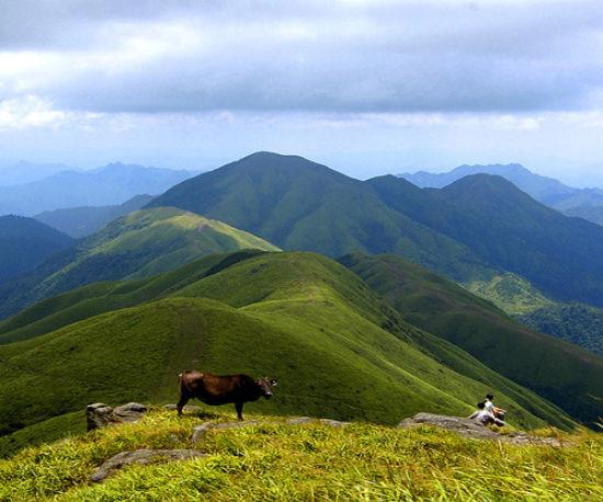 栖息着多种野生动物,据传山顶毛草从中偶有华南虎.   行程安排