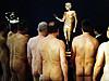 维也纳裸男博物馆
