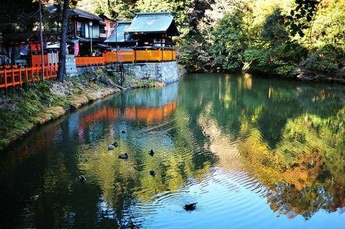 粉末京都探访最神秘的艺妓学校(图)