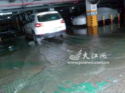 地下车库积水太深,小车只得淌水出入