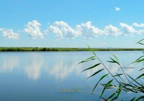 科洛河湿地