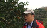 董克平:一定要让更多的人吃到赣南脐橙