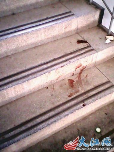 丢进楼下的垃圾桶,小狗的血沿途滴洒在宿舍楼楼梯上