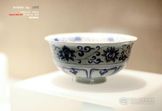 中华瑰宝首都博物馆收藏的精美瓷器