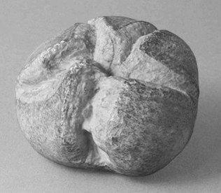奥地利瓷器代表作:皇帝小圆面包