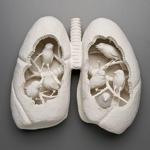 KateMacDowell's雕塑:变异的地球生物