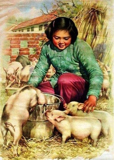 20世纪中国食品宣传画走红网络