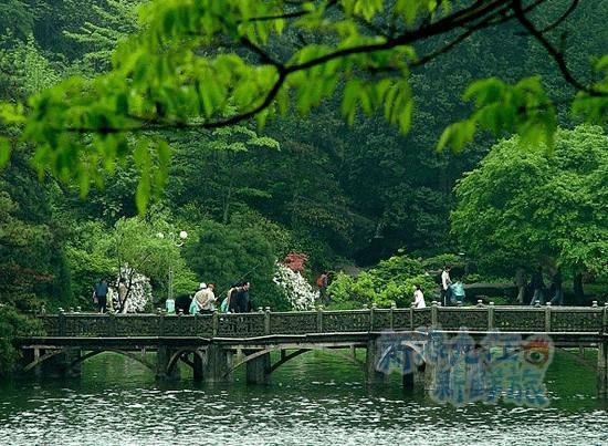 莲花洞森林公园