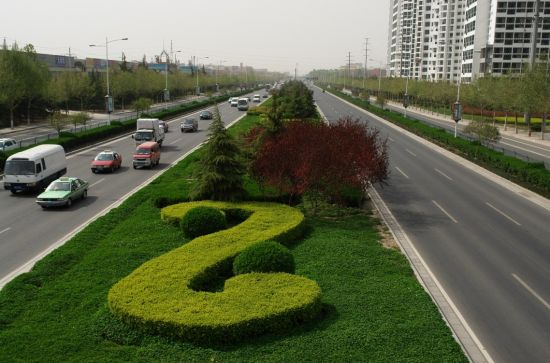 公司项目——郑州南三环绿化