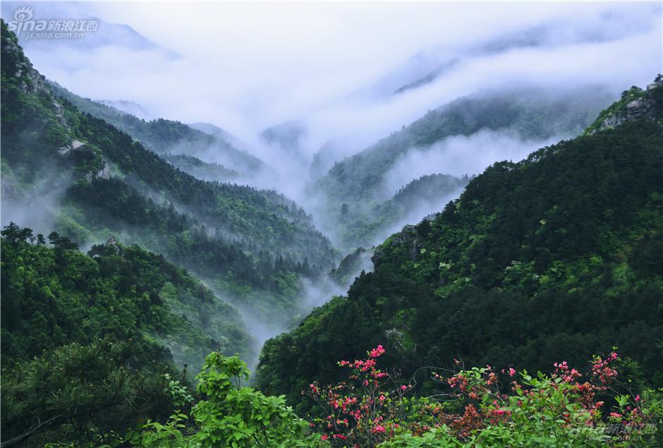 五月观庐山云雾