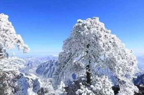 三清山风景名胜区官方微信)
